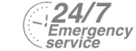 24/7 Emergency Service Pest Control in Enfield, EN1. Call Now! 020 8166 9746