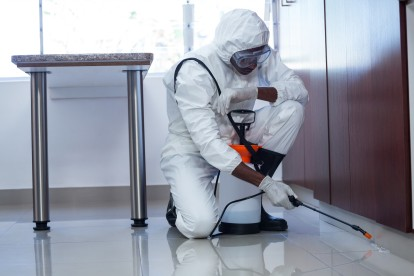 Emergency Pest Control, Pest Control in Enfield, EN1. Call Now 020 8166 9746